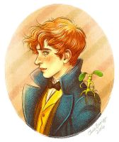Newt Scamander by ChrisBexiga