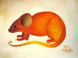 mouse by Rutalo