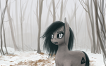 Ask Helen - Winter Entry by ninthsphere