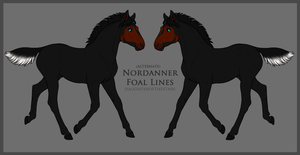 9426 DWS Rise of the Flare design holder by EmeraldTheWolf