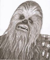 Chewie by Slayerlane