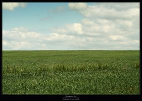 Grass and Sky by Gustavs