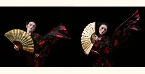 The Beauty of Geisha by L2design