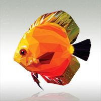 Low Poly Discus Fish by kingstomper