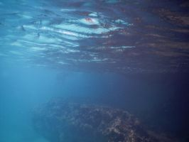 Bermuda 028  Underwater Stocks by FairieGoodMother