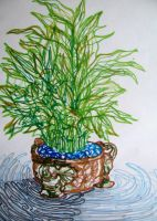 Bamboo Plant by m-yun