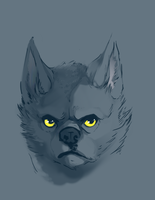 Wolf by shadefeather413
