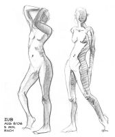 Figure Drawing 2006-08-08 1 by Zubby