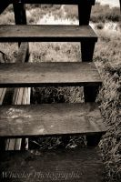 step side by wheeler-photographic