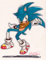 Sonic Boom by Megatoon27