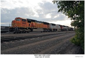 BNSF 9866, 8294 and 9834 by hunter1828