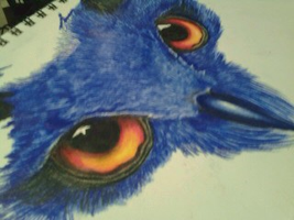 Colored Pencil Owl WIP by River-Painted-Gold