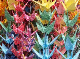 Paper Cranes by Qitian