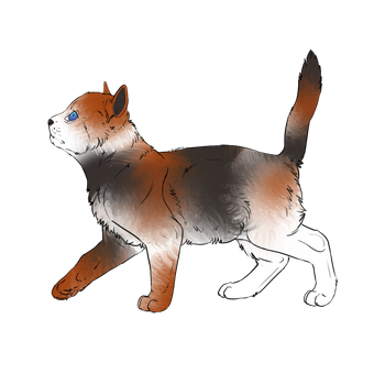 Kitten Adopt - 10 points - OPEN by lil-fawn-adopts