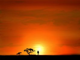 Alone In Sunset by aftab318