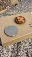 Plate of Peanut Butter Cookies by MouseEmporium