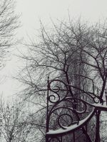 Gate in the winter by 97lessi