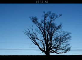 HUM by Moon-Willow
