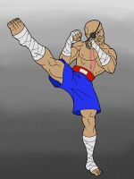 Draw Everything Part 3: Sagat Kick by JohnRaptor