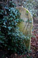 Headstone in the Undergrowth 1 by OghamMoon