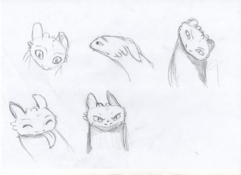 HTTYD - Tootless emotions by sharrm