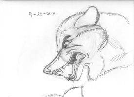 anthro heads after foley 24 by Dr-Pen