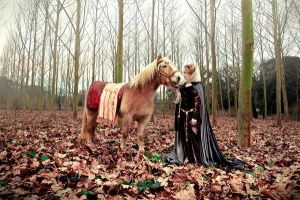 Guinevere and bretonnian horse by Costurero-Real