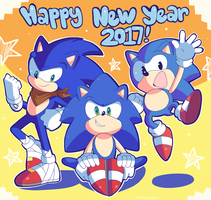 2017 New Years by Domestic-hedgehog