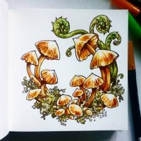 Instaart - Mushrooms and ferns by Candra