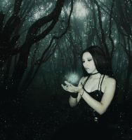 Magical Forest by Sinister666beauty