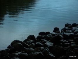 Water's Edge by Letiel