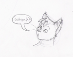 Whoah by Moonflight-RiverClan