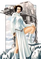 Color Leia.... by Ruihq