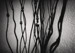 Branches by O--V