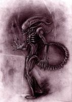 the one and only alien by Anarchpeace
