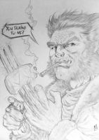 WOLVERINE SKETCH 2012 by barfast