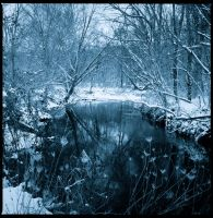 Winter stream pool by harrietsfriend