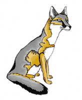 swift fox first color tryout by Chromone