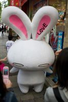 Love Bunny by apetc