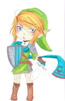 Link-Hyrule Warriors by funkynary