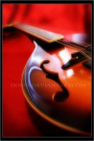 Mandolin by donia