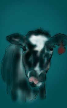 The sticky cow by Nighwood