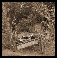 Parked Wagon by CaroleLee
