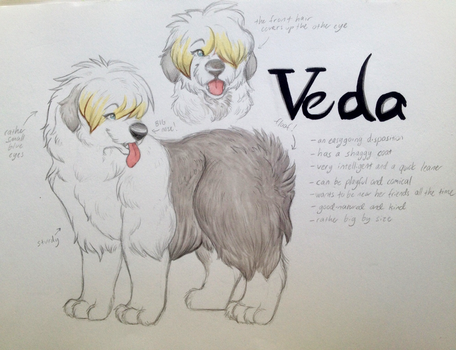 Veda - a fursona reference sheet by NAnettao