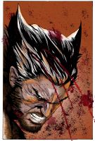 Colored Wolverine Close By Glaubermatos by triple--eight