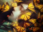 Sleeping With Butterflies by tincek-marincek