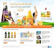 Orange Crush website mockup by projectDC