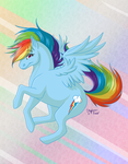 MLP: Rainbow Dash by Pookabay