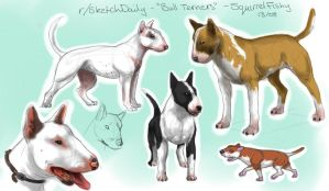 Bull Terriers by CyberSquirrelFish