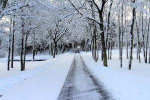Winter Lane by Celem